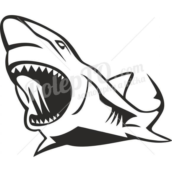 Žralok 2