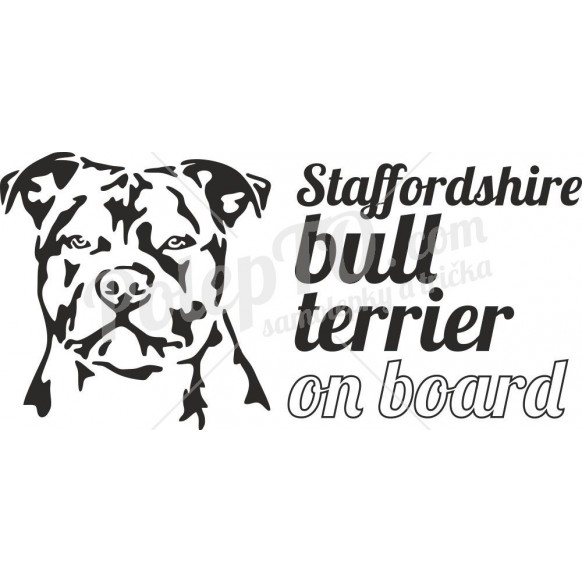 Stafford bull terrier on board