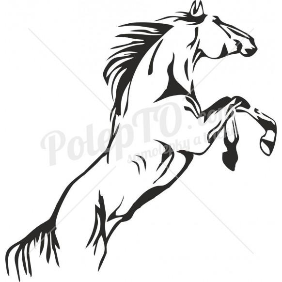 Kůň na zadních nohách