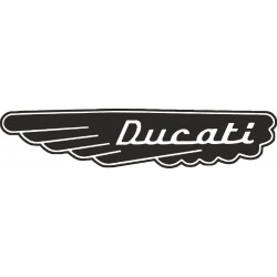 Ducati wing - pravé