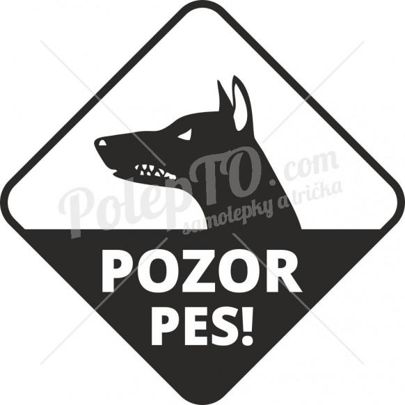 Pes v autě trojůhelník